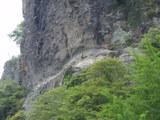 耶馬渓崖アップ